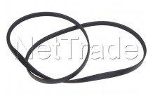 Fagor / brandt - Drive belt poly-v 1249j5 - 55X8202