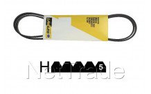 Zanussi - Poly-v belt 1884 h5 - 1255028100