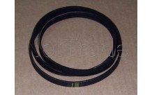 Beko - Poly-v drive belt1244j4 elast. -wa1252/wml15105/25125 - 2816750100