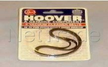 Hoover - Riem  -  pure power - 09161985